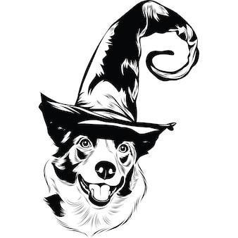 Border collie-hond met heksenhoed voor halloween