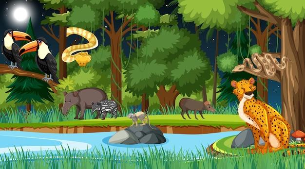 Bos bij nachtscène met verschillende wilde dieren Premium Vector