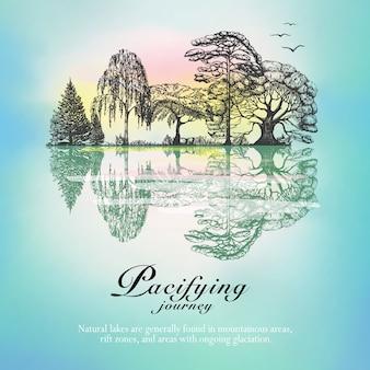 Bos landschap reflectie hand getekende poster