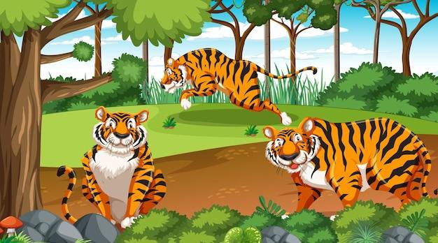 Bos- of regenwoudscène met tijgerfamilie