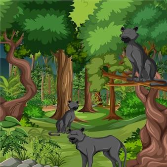 Bos- of regenwoudscène met zwarte panterfamilie