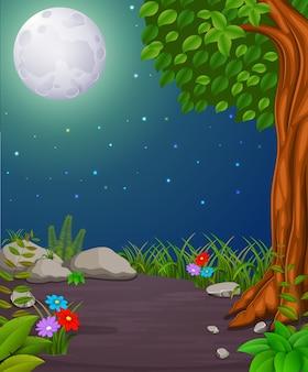 Bos 's nachts en hout met volle maan