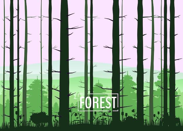 Bos, silhouetten, bomen, dennen, sparren, natuur, milieu, horizon, panorama