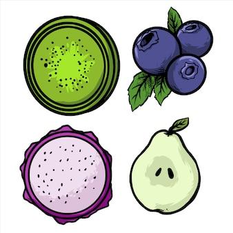 Bosbessen draak fruit peer en kiwi fruit pack ontwerp illustratie