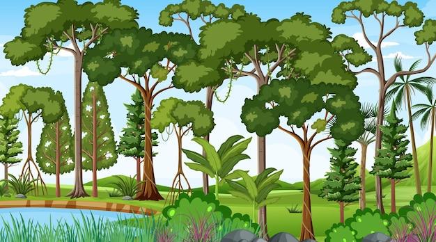 Boslandschapsscène overdag met veel verschillende bomen Premium Vector