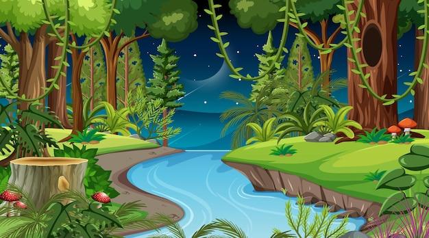 Boslandschapsscène 's nachts met veel verschillende bomen