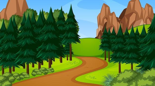 Bosscène met verschillende bosbomen en looppadpad