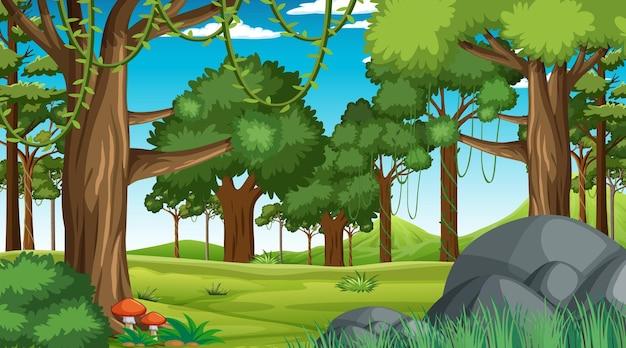 Bosscène met verschillende bosbomen en