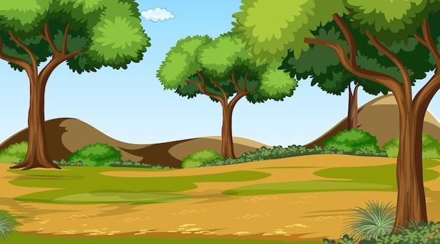 Bosscène met verschillende bosbomen