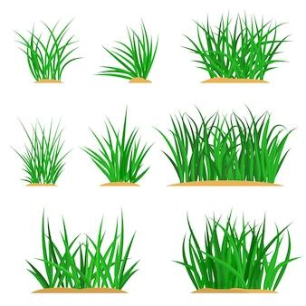 Bossen van groen gras op een aarden heuvel. ontwerp van zomerkaarten. platte cartoon afbeelding. objecten geïsoleerd op een witte achtergrond.