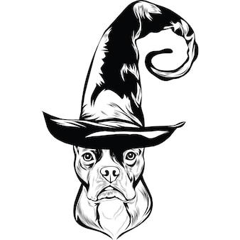 Boston terrier-hond in heksenhoed voor halloween