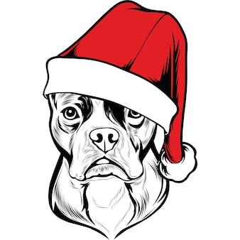 Boston terrier-hond in kerstmuts voor kerstmis