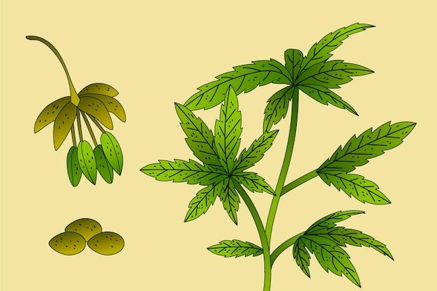 Botanisch cannabisblad behang