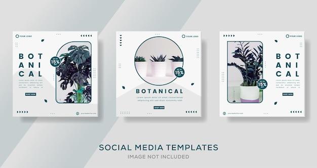 Botanisch groen bannersjabloon voor social media post premium