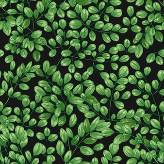 Botanisch naadloos patroon met miracle tree of moringa oleifera-bladeren