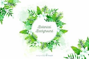 Botanische achtergrond