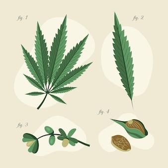 Botanische cannabisbladeren pack