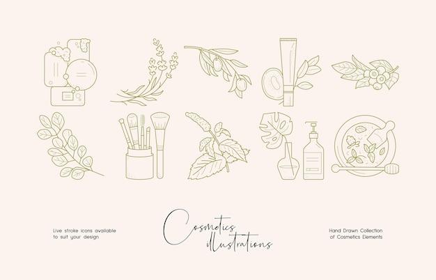 Botanische cosmetica lijntekeningen illustratie set voor merkidentiteit