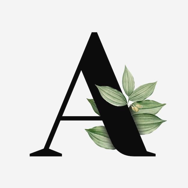 Botanische hoofdletter a Gratis Vector