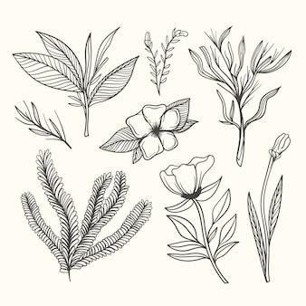 Botanische kruiden & wilde bloemen in vintage stijl