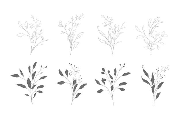 Botanische lijntekeningen van twijgen en takken met bladeren