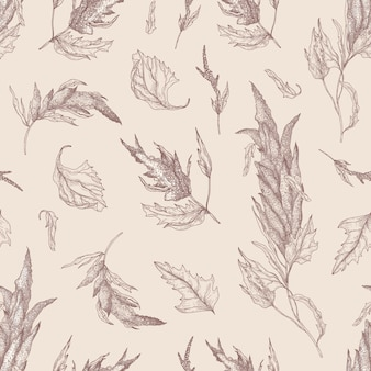 Botanische naadloze patroon met quinoa of amarant plant hand getekend met contourlijnen op lichte achtergrond. natuurlijke achtergrond met eetbare graangewas. realistische vectorillustratie in antieke stijl.