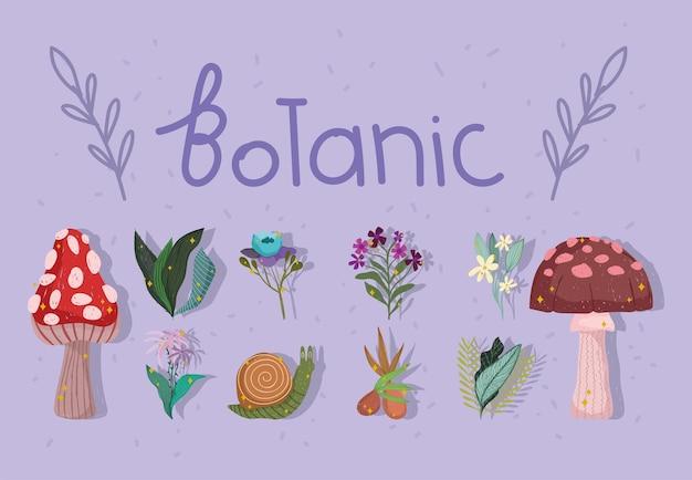 Botanische natuurlijke banner
