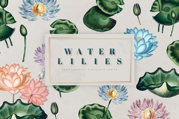 Botanische waterlelies collectie