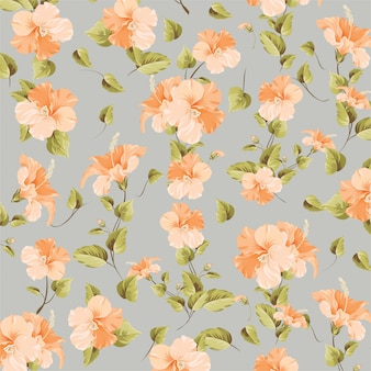 Bougainvillea bloemenpatroon