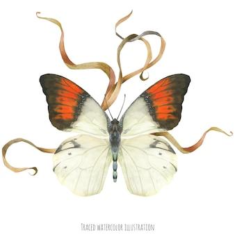 Boutonnièresamenstelling met vlinders en plant