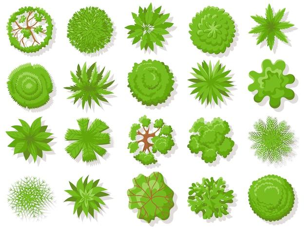 Bovenaanzicht planten. tropische bomen, groene plant boom van bovenaf voor luchtfoto kaart geïsoleerde collectie