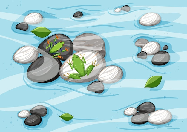 Bovenaanzicht van rivierscène met kikkers op kiezelstenen