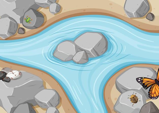 Bovenaanzicht van riviertafereel met kikkers