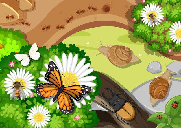 Bovenaanzicht van vijver close-up scène met veel insecten
