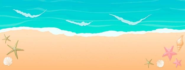 Bovenaanzicht van zonnig strand met schelpen en zeesterren op het zand