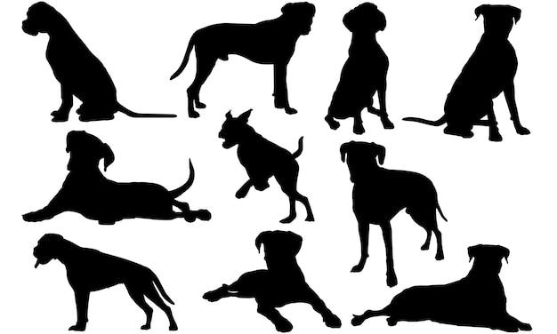 Boxer dog silhouet