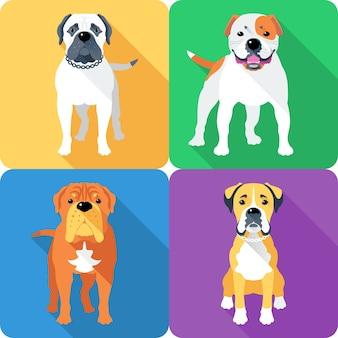 Boxer en american bulldog ras gezicht pictogram plat ontwerp