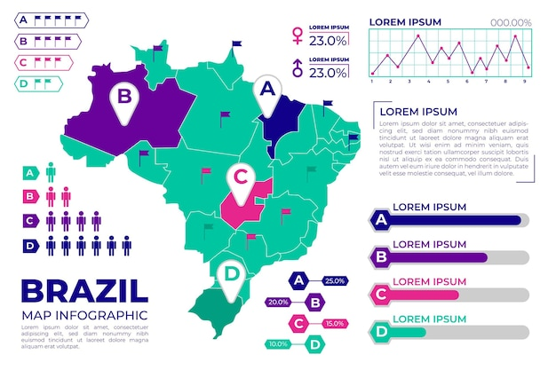 Brazilië kaart infographic plat ontwerp