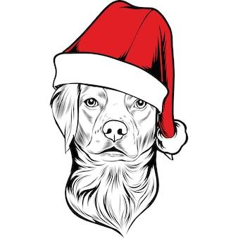 Bretagne spaniel hond in kerstmuts voor kerstmis