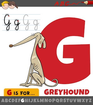 Brief uit alfabet met cartoon windhond hond