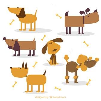 Bruine honden
