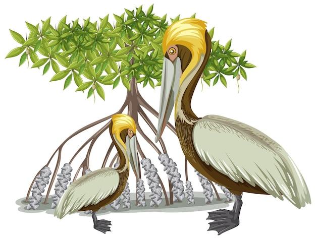 Bruine pelikaan met mangroveboom in cartoon-stijl op witte achtergrond