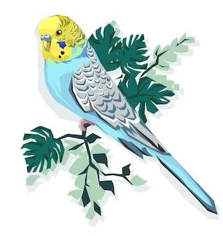 Budgie illustratie afdrukken. papegaai en bladeren.