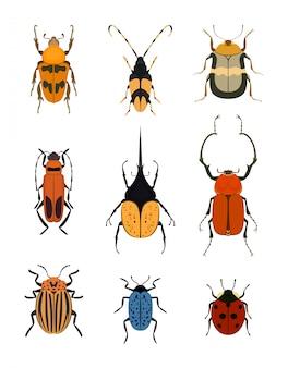 Bug icon set geïsoleerd op wit