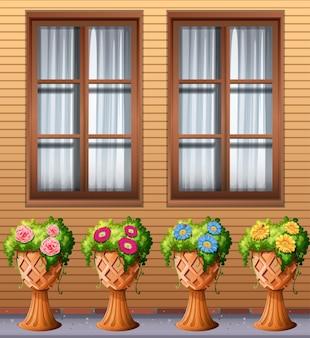 Buitenplant onder het raam