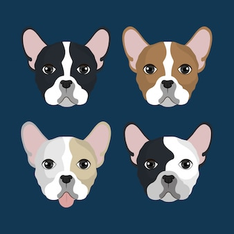 Bulldog hoofden pack