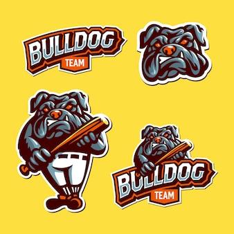 Bulldog mascot logo sport set