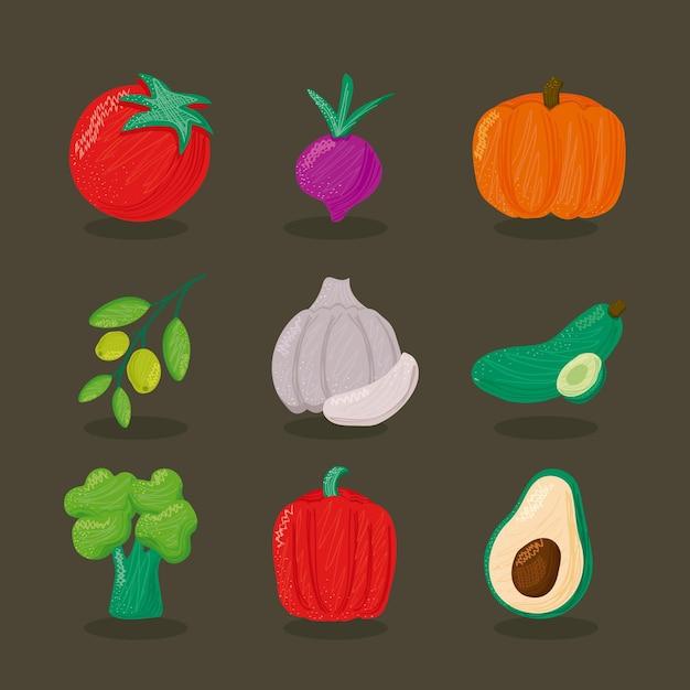Bundel van negen de pictogrammenillustratie van de groenten gezonde voeding