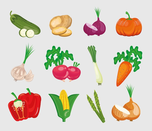 Bundel van twaalf groenten die op witte achtergrond worden geplaatst.