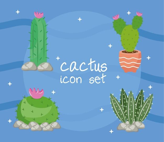 Bundel van vier cactusplanten en belettering decorontwerp pictogrammen illustratie